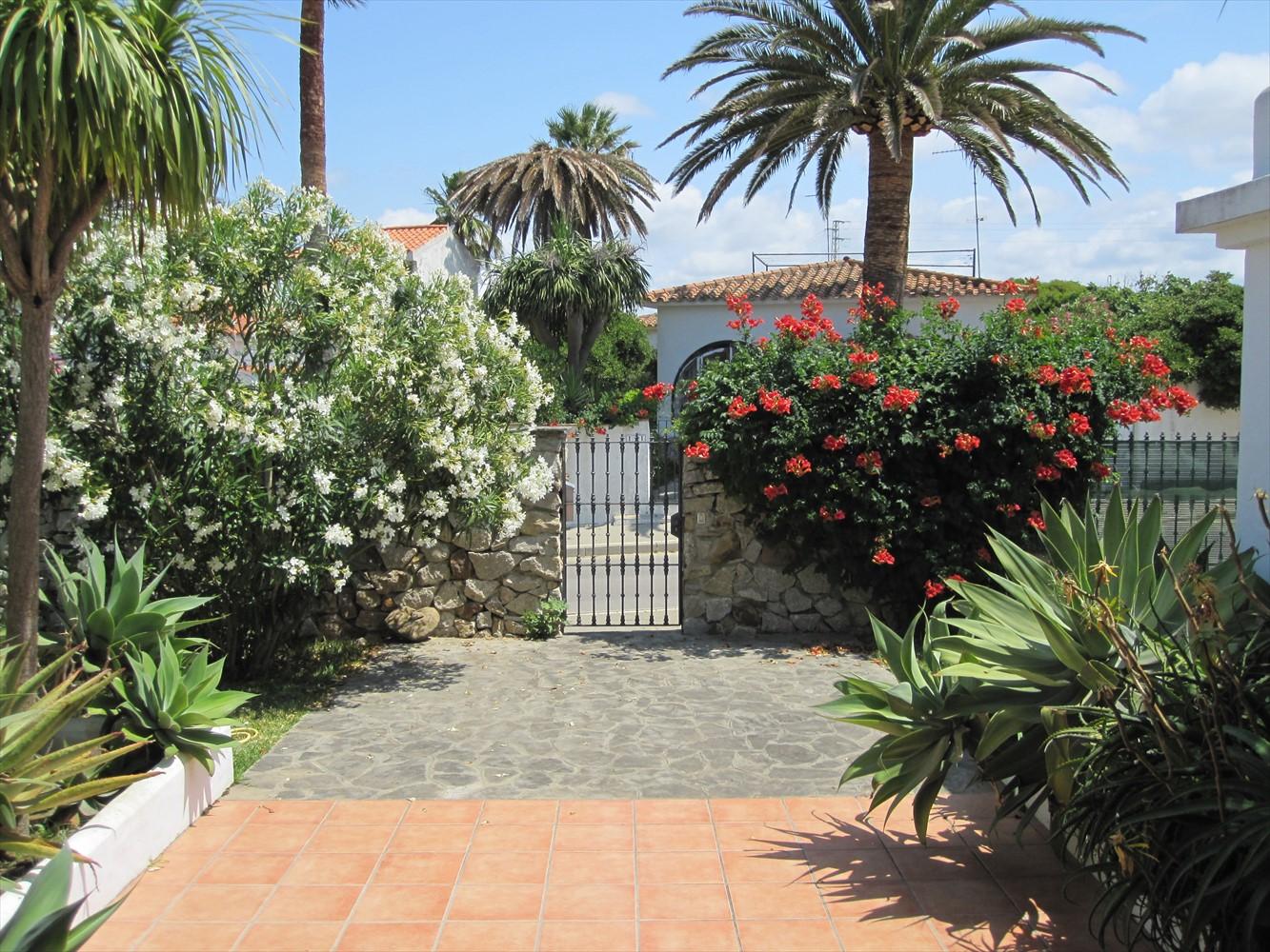 oleander am eingang